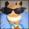 sunglasses, eevee