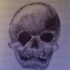 Larkin Skull