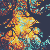 vogue_dreamer userpic