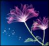 fictionnight userpic