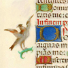 Flanders_psalter_16th