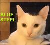 steve blue steel