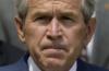 Буш с прищуром