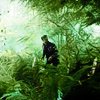 [grimm] Nick in the forest
