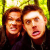SPN - Winchesters