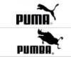 pumba_dr