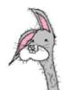 slashanything userpic