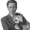 Lion Plushie