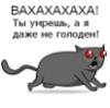 askold_sa
