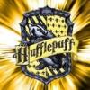 Hufflepuff to the bone