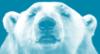 polarbearapp userpic