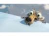 mrblackdog