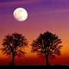 moon_andstars