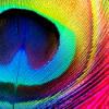 created_beauty userpic
