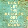 Sapphire R.: HP; Muggles; Down
