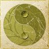 Rowan aka: The Seticat: gen - green yin-yang - unexpectedbox