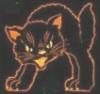 Кошка Мохнаткина Цыга