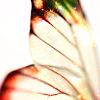 nijawial userpic