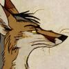 culpeo_fox