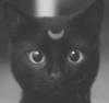 miss_ostrouhova userpic