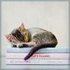 Mischief: KittenBooks