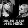 ohnonotbirdsandbees