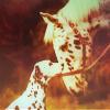 "Sere ""瀬玲奈"": Stock-HorseDog"