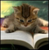 Book Kitty