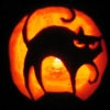 Cat, Halloween, Pumpkin