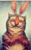 я - тигр