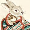 Bunny&friend