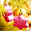 Shiorita: navidad