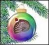 Christmas nautile