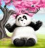 панда в розовом цвету