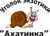 ugolok_ahatinka userpic