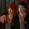 Yerimen: Harry and Ginny