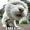cat - U smell