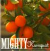 amightykumquat: pic#119608156