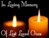 <3 In Loving Memory of Lost Loved Ones <