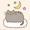 Кот на облаке