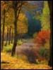 artist_cards