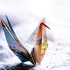 Morigawa Akumi: a thousand paper cranes