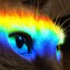 raduzhnyj_kot userpic
