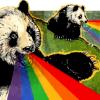 other // rainbow pandas