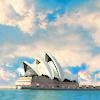 Dragonfly_lily: Sydney