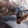 дракон, защищайтесь