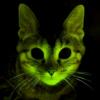 Светящийся кот mini