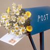 почта, письмо