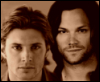 older jared younger jensen sepia