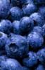 simpleberry userpic